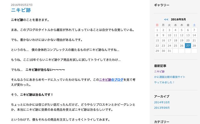 ニキビ跡のブログ.JPG